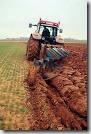 Pesticides sol