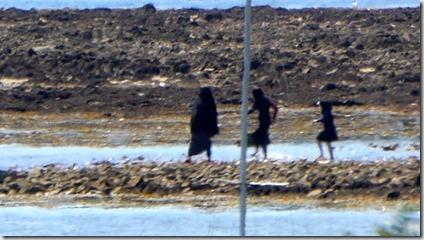 Burka à Brénéguy